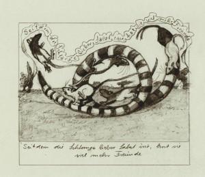 Ratten spielen mit einer Schlange